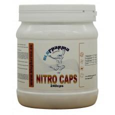NITRO CAPS 240cps