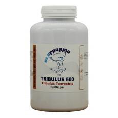 TRIBULUS 500 300cps