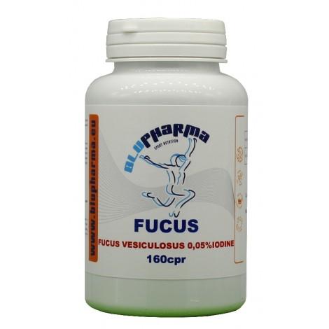 FUCUS 160cpr
