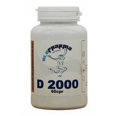 D 2000 60cpr